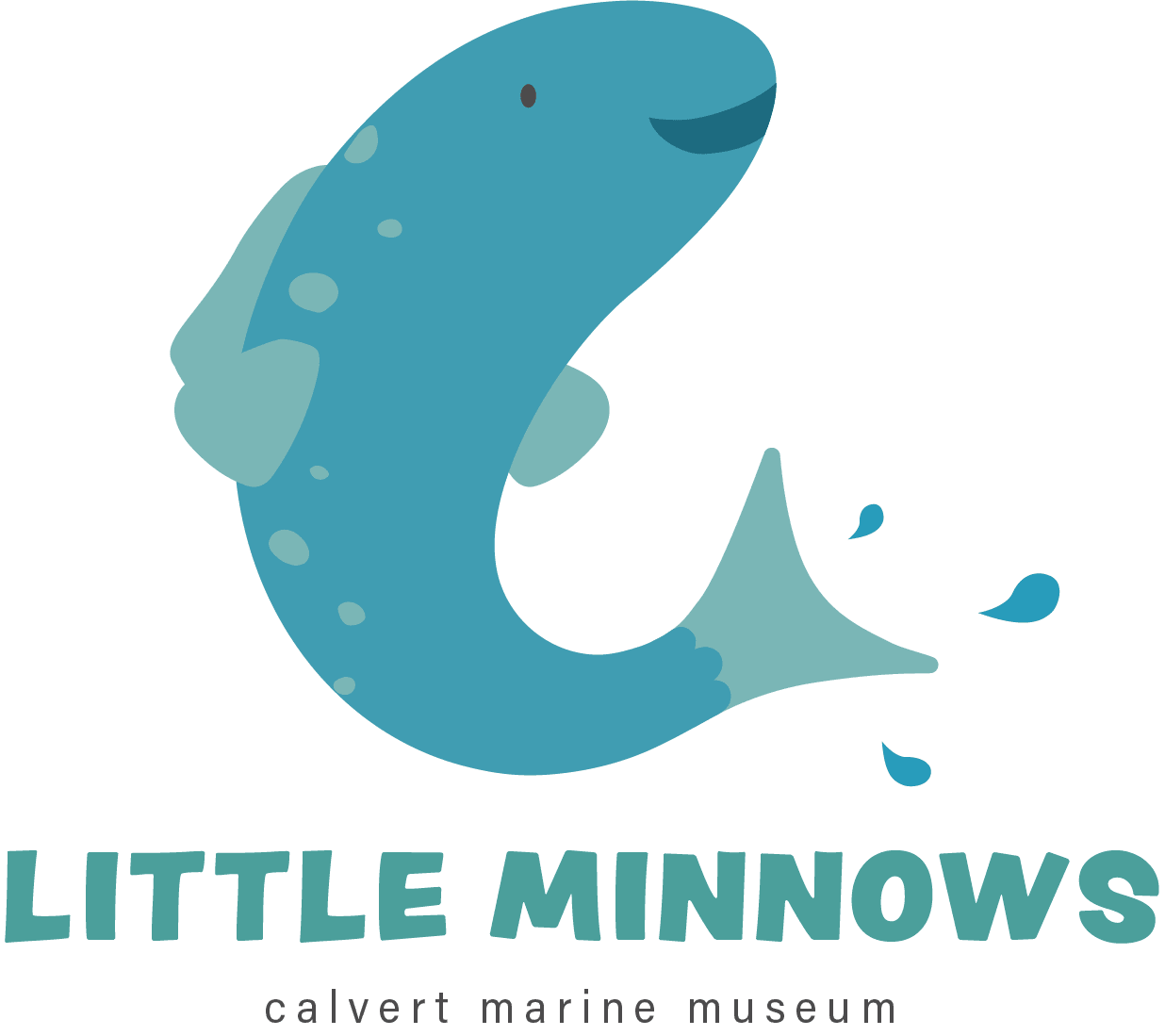 Little Minnows Program