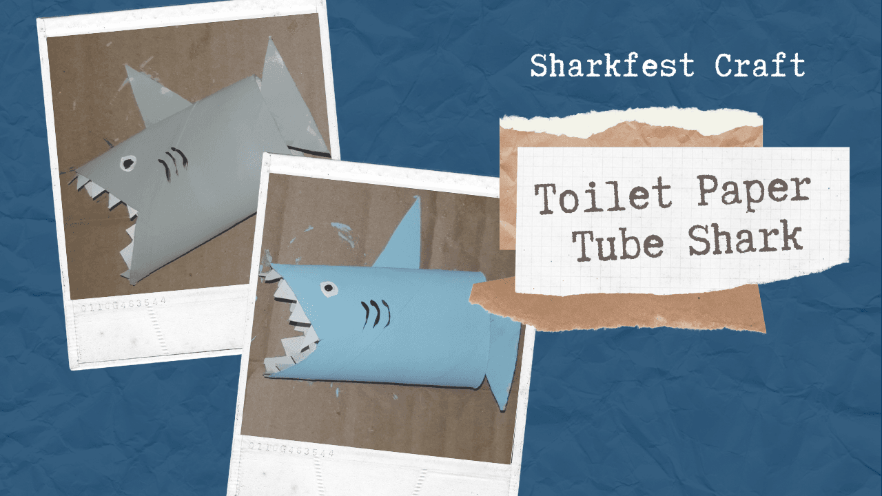 Toilet Paper Tube Shark Opens in new window