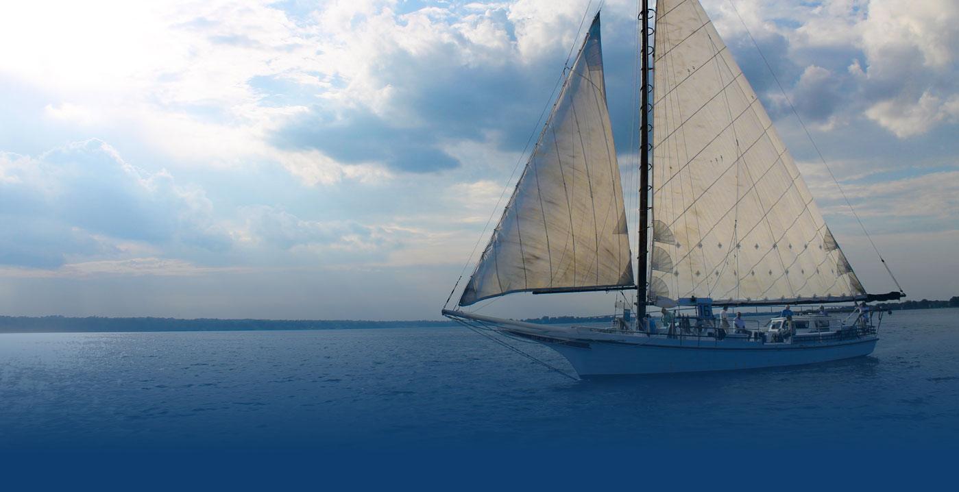 calvert marine museum md official website official website