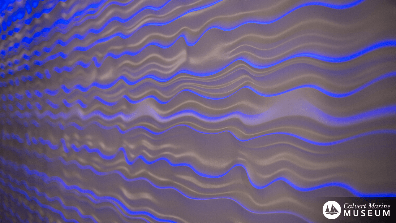 CMM Zoom Background - Wave Wall
